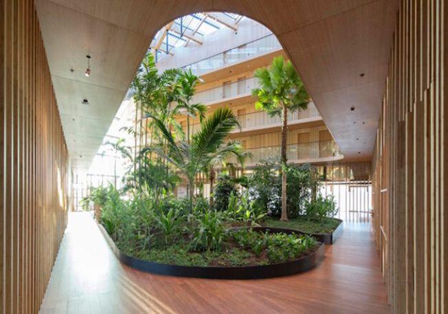 Деревянная эко-гостиница в Нидерландах 1